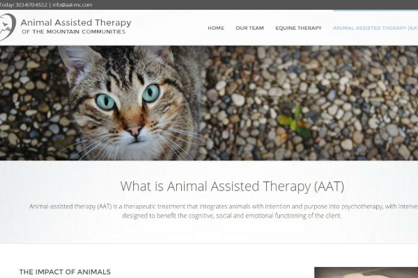therapist websites, wordpress websites for small business